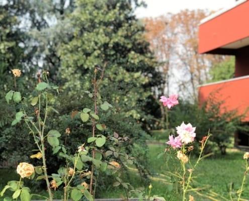 Attico con terrazzo a Monza con giardino
